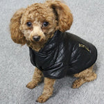Hooded Leather Jacket For Small to Medium Sized dogs - Frenchie N Pug