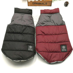 New Winter Autumn Thick Warm Down Jacket - Frenchie N Pug