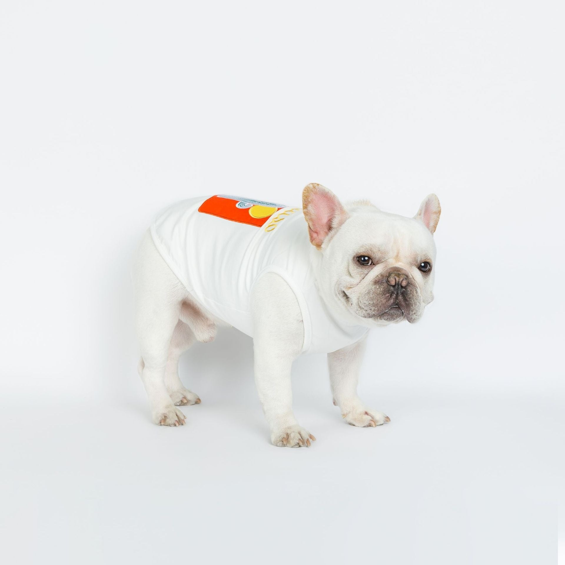 Cactus Painting Soft Vest for Frenchies - Frenchie N Pug