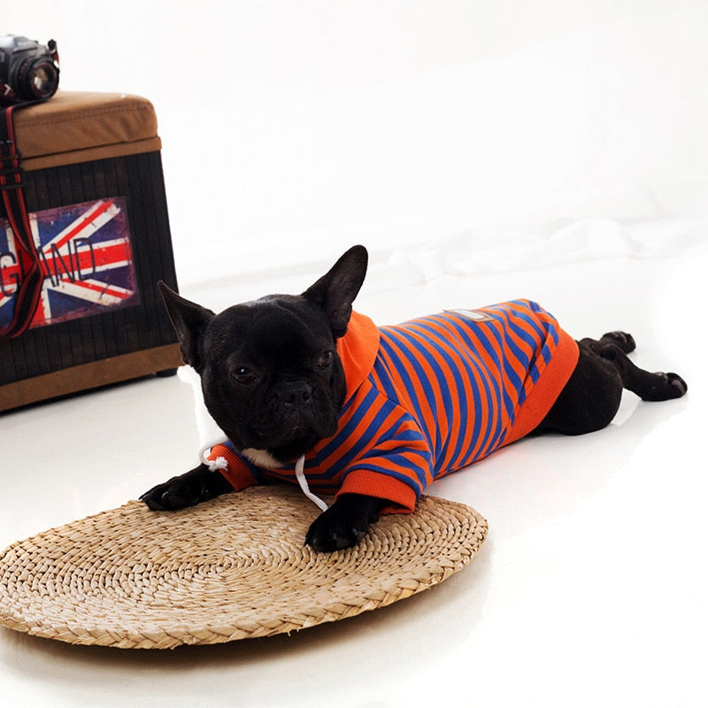 Spring Autumn Striped Outfit - Frenchie N Pug