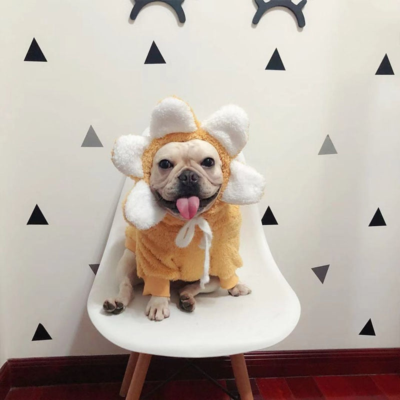 Sunflower Hooded Outfit - Frenchie N Pug