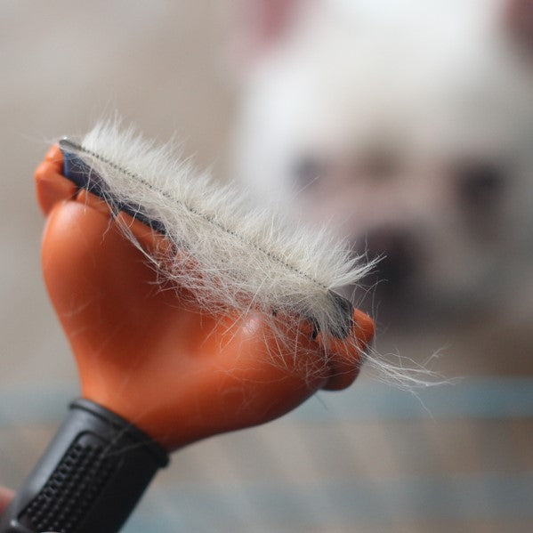 Pet Grooming Brush - Frenchie N Pug