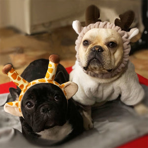 Animal Party Headband for small dogs - Frenchie N Pug