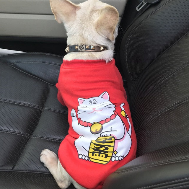 Lucky Cat Pattern Sweater - Frenchie N Pug
