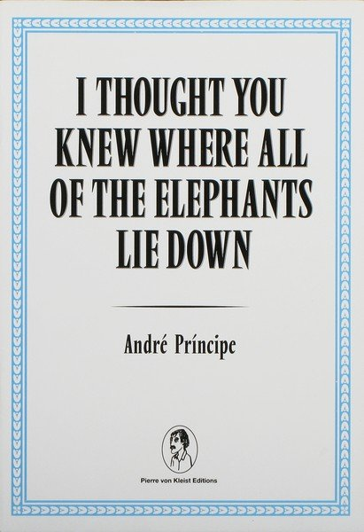I THOUGHT YOU KNEW WHERE ALL OF THE ELEPHANTS LIE DOWN by André Príncipe