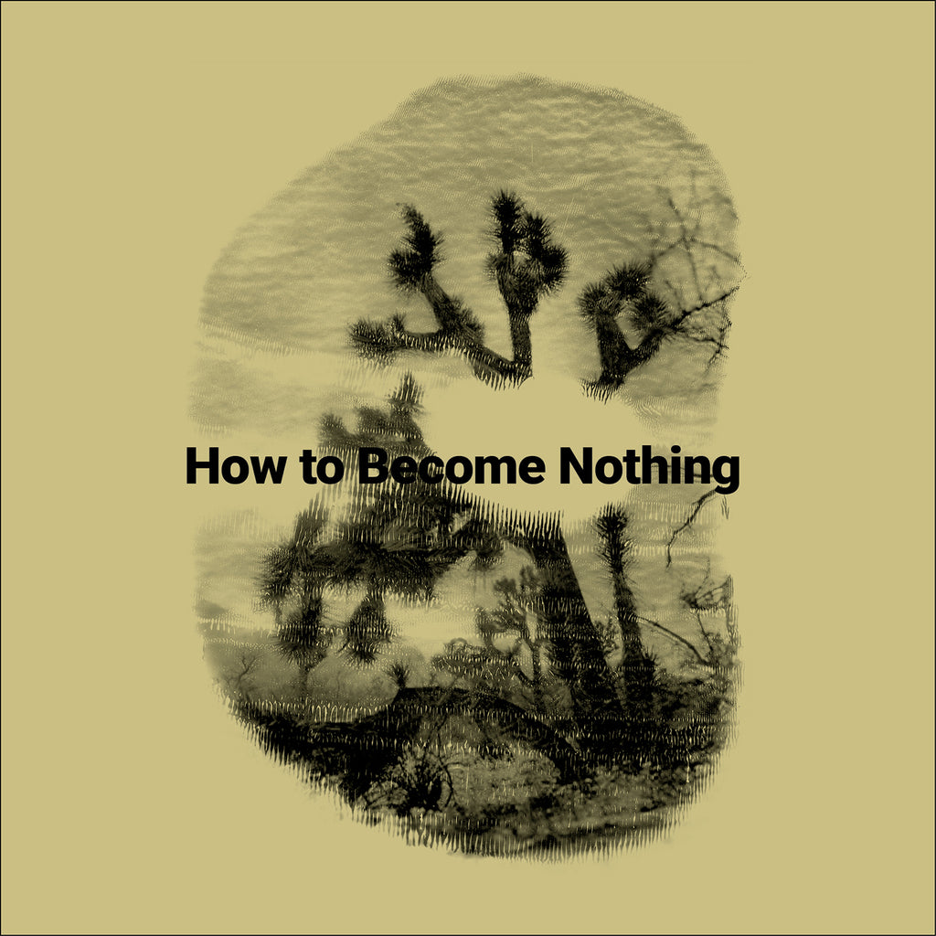 HOW TO BECOME NOTHING by The Legendary Tigerman and  Rita Lino (12'' LP + Book)