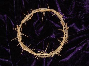 Hand Made Crown Of Thorns
