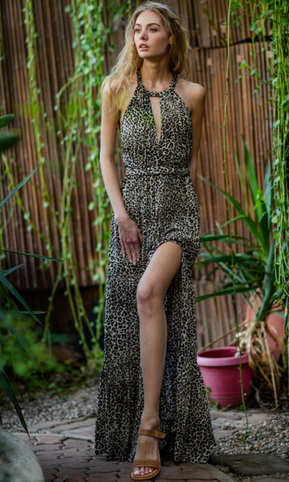 Enthusiastic Leopard Maxi Dress