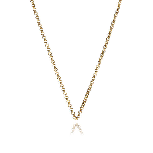 Gold Steel Me Petite Necklace 50cm (3926672277590)