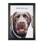 Personalised Pet Portraits With Frame