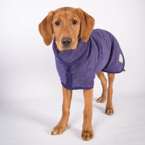 Ruff & Tumble Dog Drying Coat - Purple