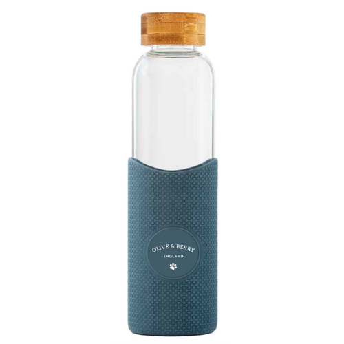 Eco-friendly Blue Glass Water Bottle