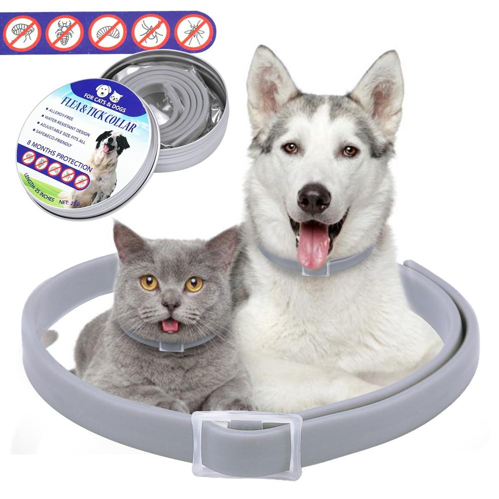 65% OFF | 2019 New Cat Dog Anti-flea Collar