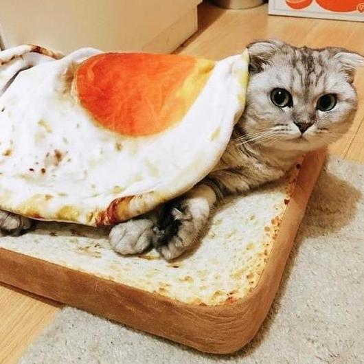 CUTE & FUNNY TOAST MAT/EGG BLANKET
