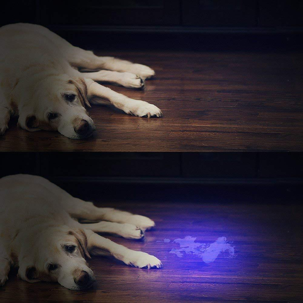 Vansky 51 LED Ultraviolet Blacklight Pet Urine Detector For Dog/Cat Urine