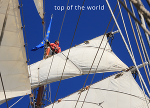 Greetings Card - Top of the World