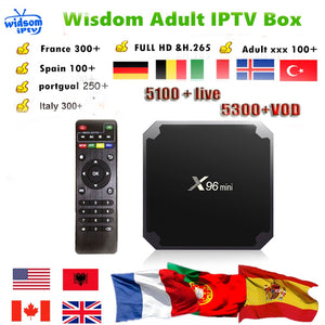 Android Smart TV Box with 6500+ Channel Europe Arabic French