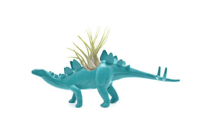 Blue/Green Stegosaurus #2