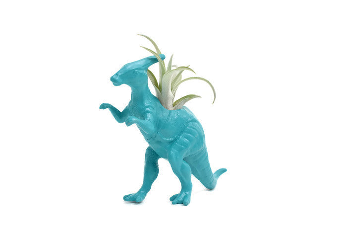 Blue/Green Parasaurolophus - Wild Child