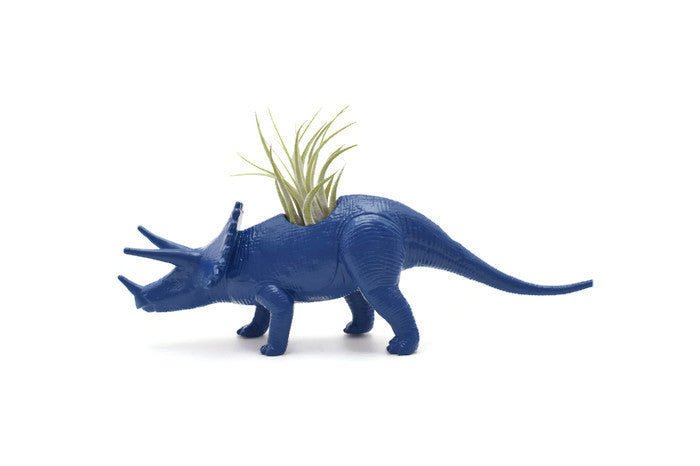 Dark Blue Triceratops
