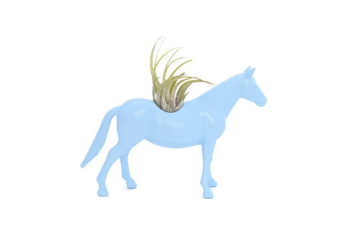Light Blue Horse