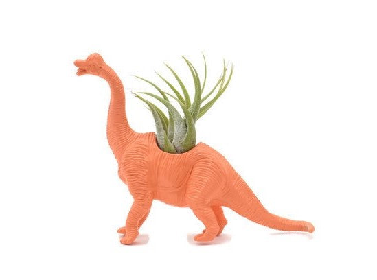 Orange Brachiosaure