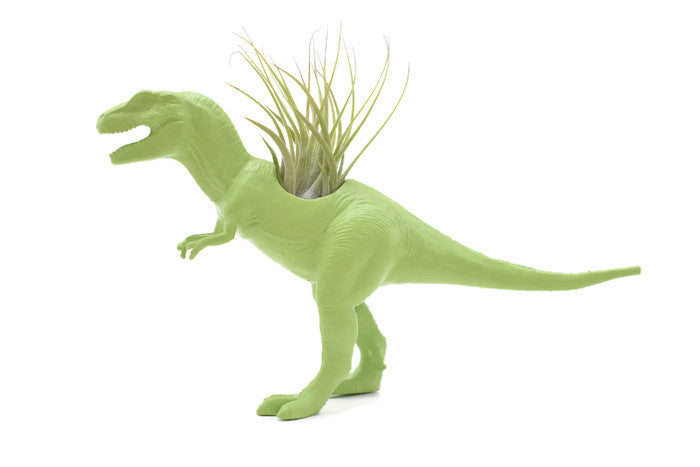 Light Green T-Rex - Wild Child