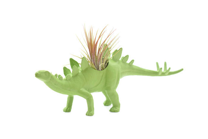 Light Green Stegosaurus #2