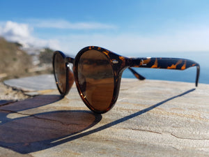 SUNGLASSES TOOTH - PLUE SUN GLASSES | Official Website | GAFAS DE SOL