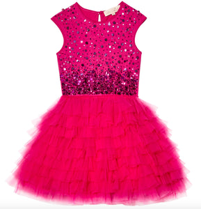Tutu Du Monde Confetti Tutu Dress In Dahlia - Honeypiekids.com