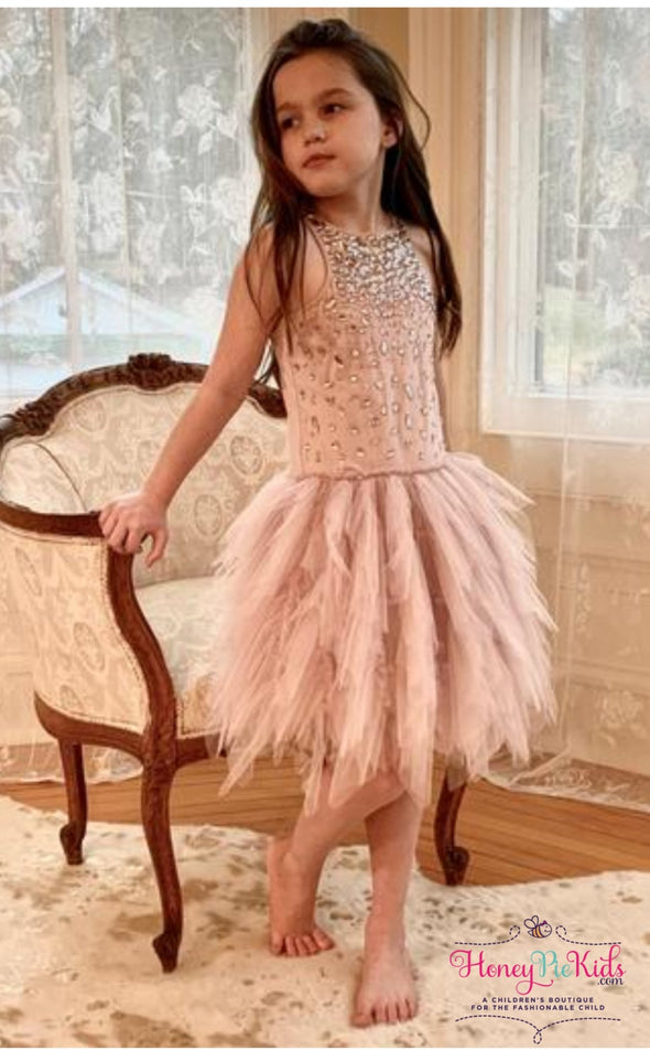 honeypiekids | Ooh La La Couture Vintage Patisserie Sparkly Rose Dress.