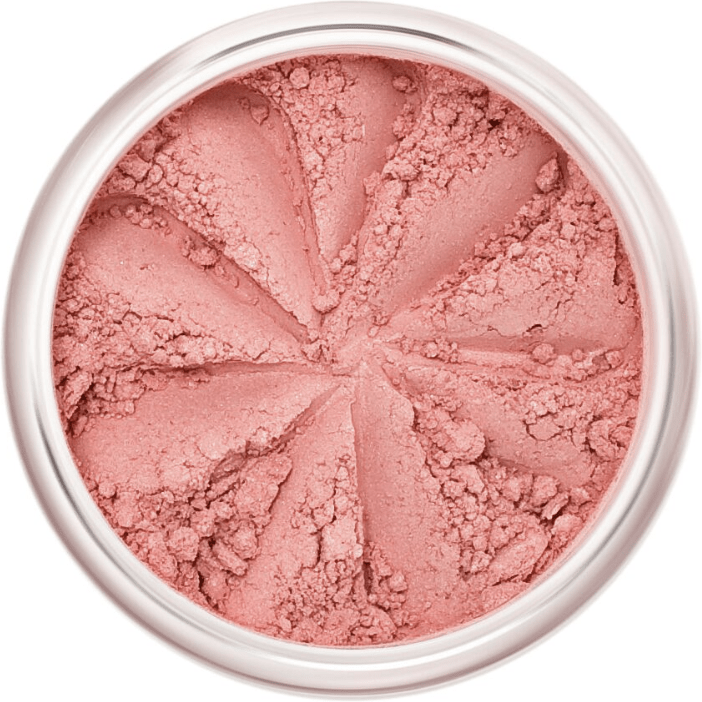 The Clean Hub Store LILY LOLO MINERAL BLUSH IN OOH LA LA