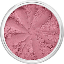 Load image into Gallery viewer, The Clean Hub Store LILY LOLO MINERAL BLUSH IN SURFER GIRL