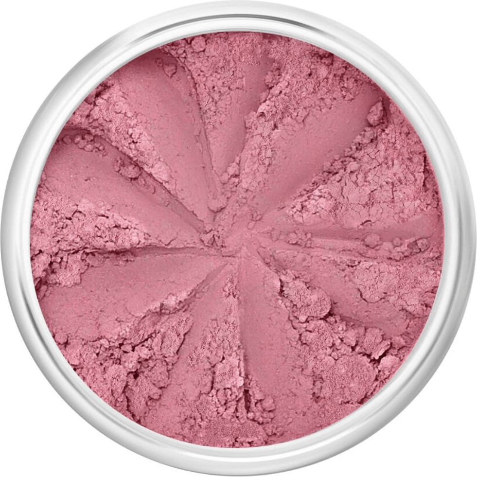 The Clean Hub Store LILY LOLO MINERAL BLUSH IN SURFER GIRL