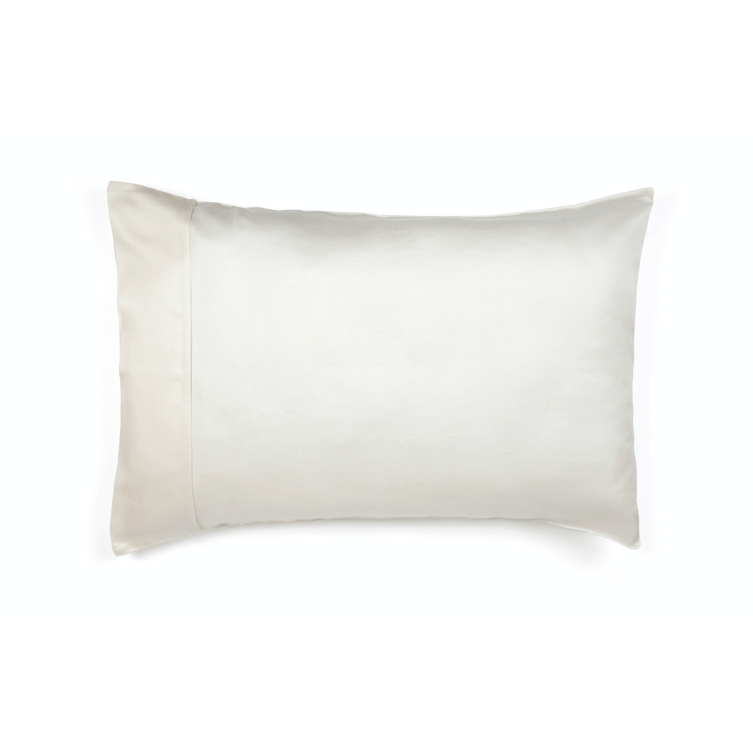 The Clean Hub Store MULBERRY SILK PILLOWCASE