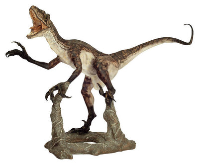 VELOCIRAPTOR / DEINONYCHOS 1 (Open Jaw) - Life-size Collectible Statue