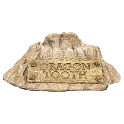 Dragon Tooth Artifact Replicas and Collectibles Harry Potter and Game of Thrones
