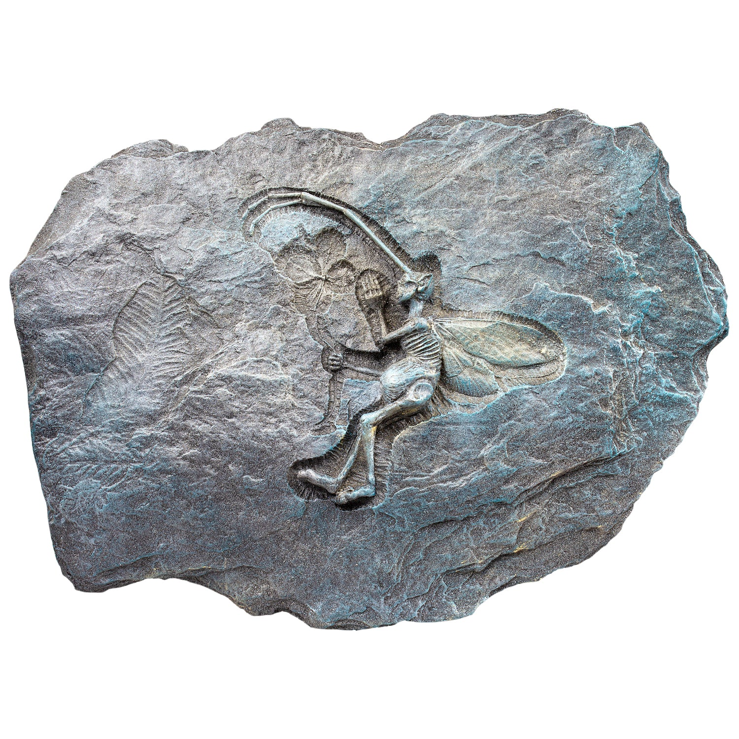 Fossilized Fairy (Silenus Sylvaticus)