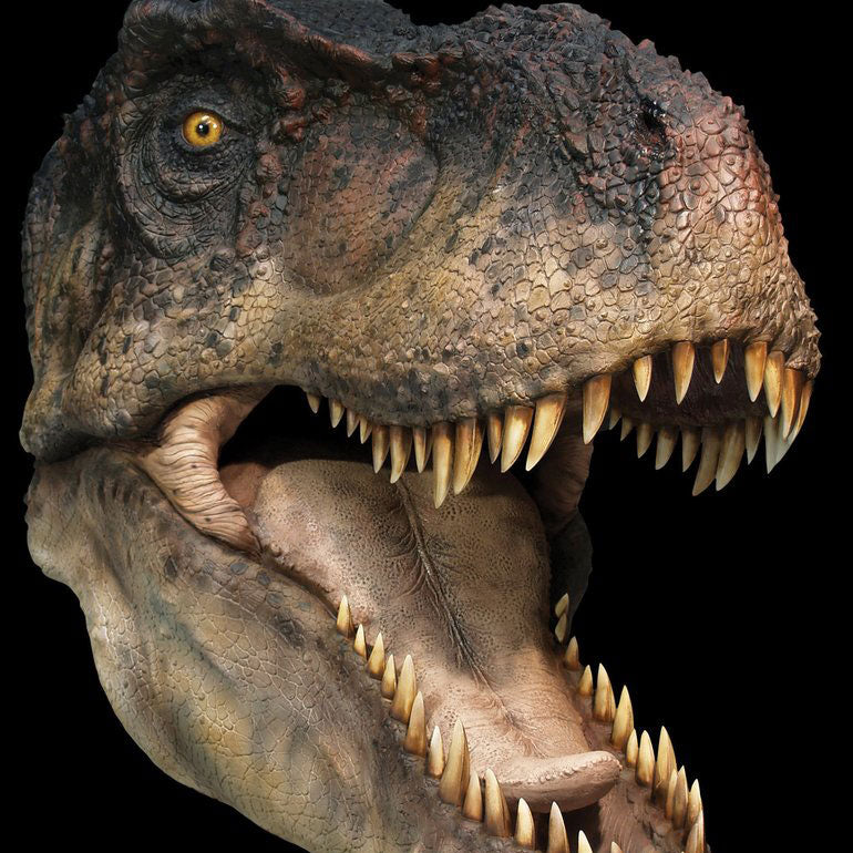 T-REX (open jaw) - Life-size Collectible Statue