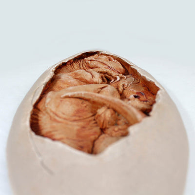 Utah Raptor Embryo Dinorama