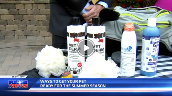 Pet Patrol – Getting your pets ready for summer