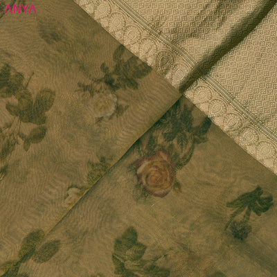 Goldish Organza Silk Fabric With Border