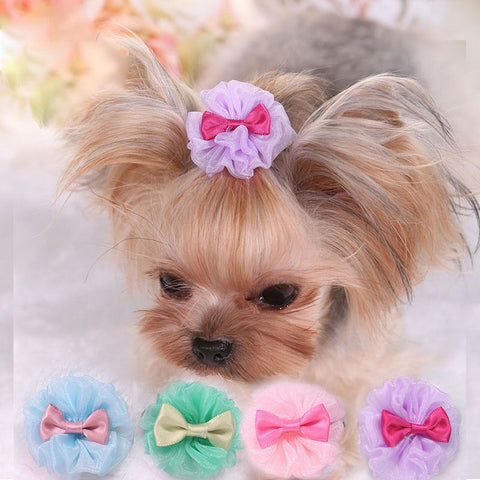 5 PCS Pretty Tulle Dog Hair Bows - Posh Puppies Boutique