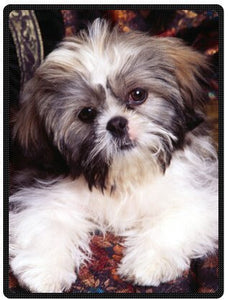 "Shih-Tzu Dog Plush Throw Blanket Travel Blanket 58"" x 80"" (Large) - Posh Puppies Boutique"