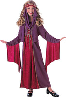 Rubies Medieval Princess Renaissance Halloween Costume child standard