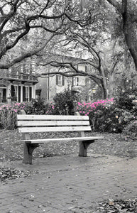 Bench in a Square