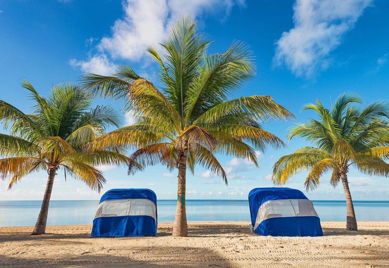 A photo of Cabanas and Coconut Palm Trees on Coco Cay, Bahamas