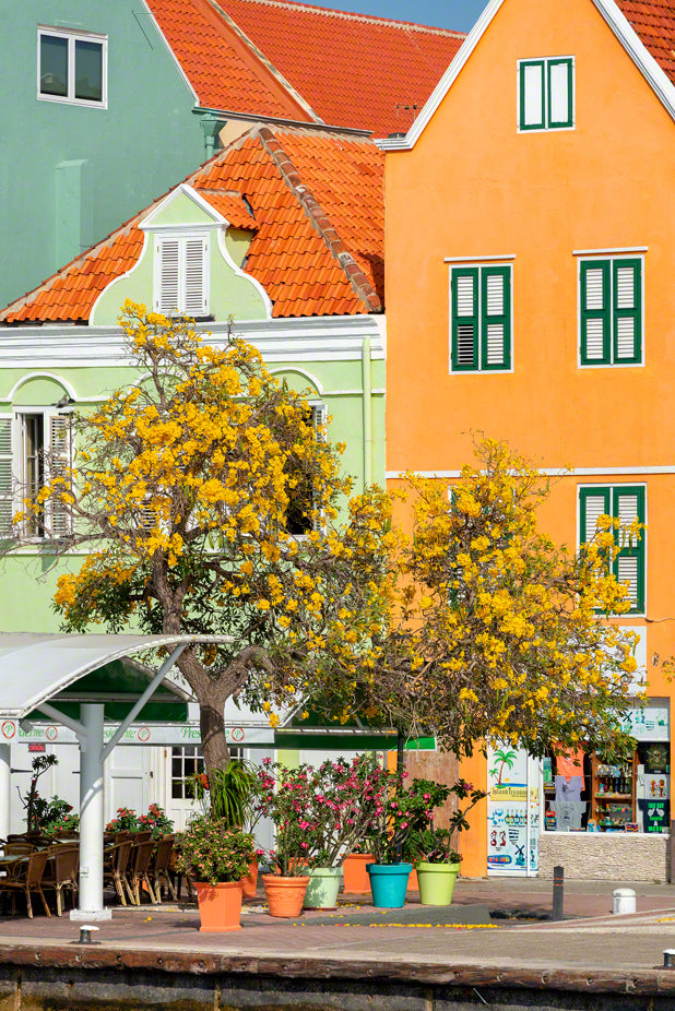 A photo of the colorful Dutch architecture in Curacao