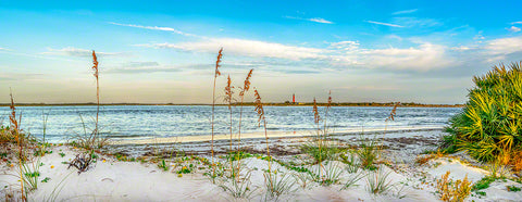 A panoramic view of Smyrna Dunes Park also known as Dog Beach in New Smyrna Beach, Florida