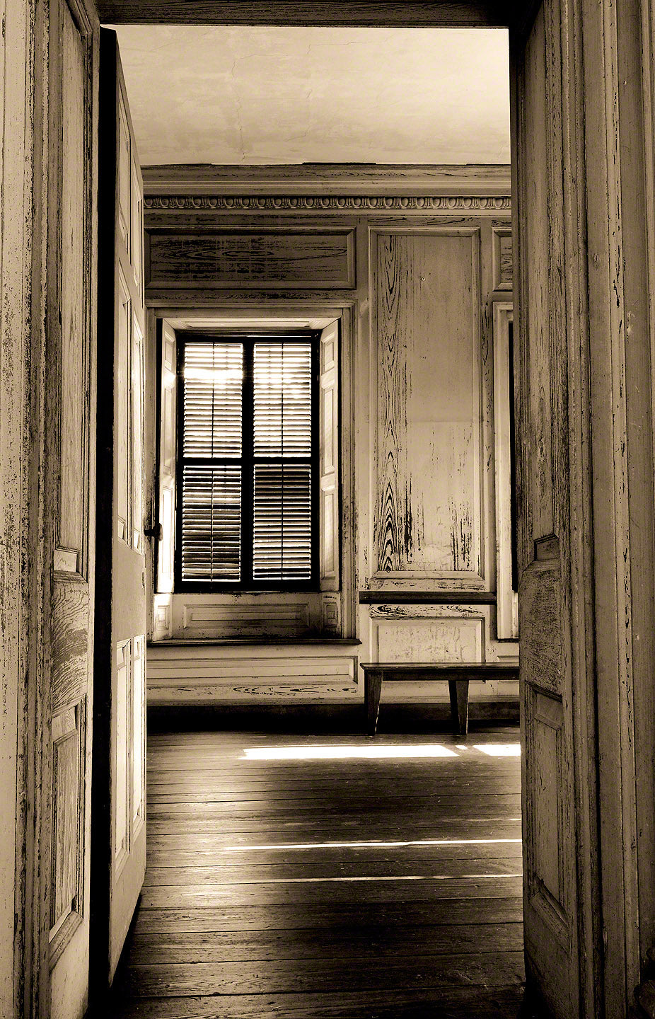 A photograph by Mike Ring of Drayton Hall Plantation
